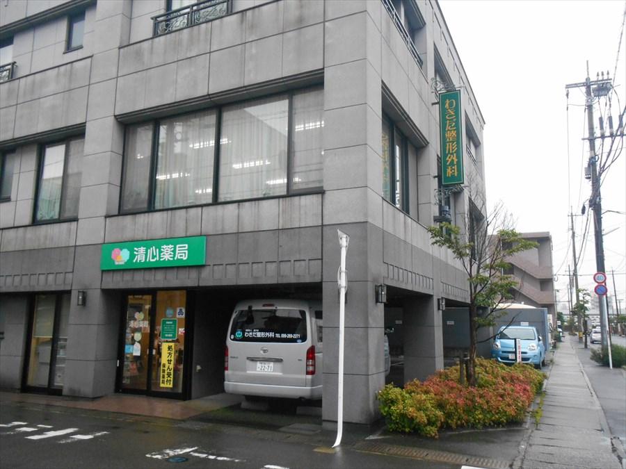 wakidaseikei_hureainomori001